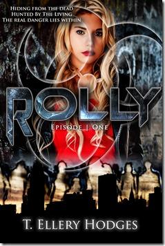 RollyCoverPrototype 11-13